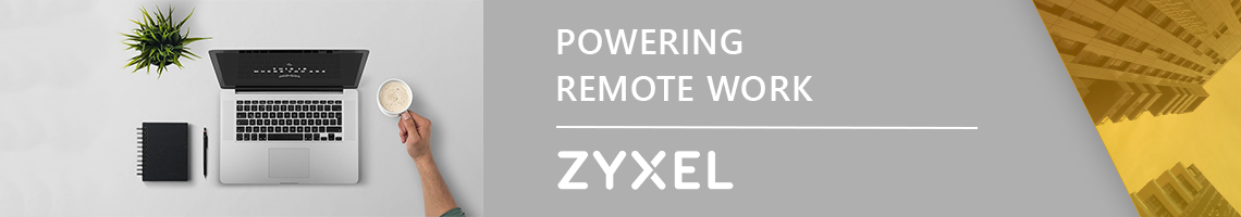 Zyxel Remote Work
